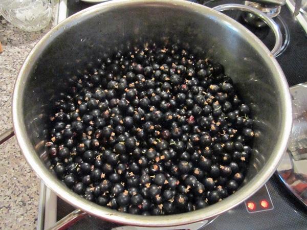 Вкусное желе из черной смородины — рецепты