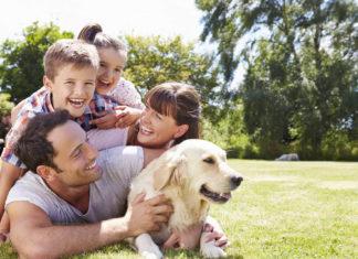 Какие породы собак идеальны для семей с детьми