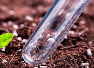Анализ почвы на пестициды