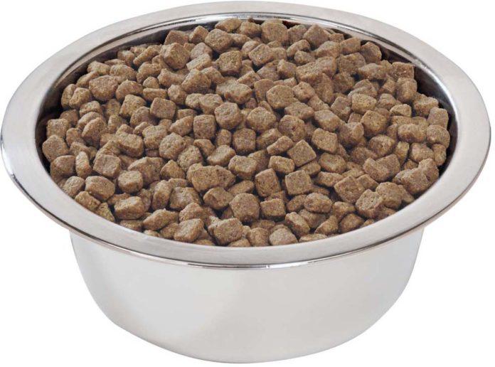 Виды сухого корма для собак